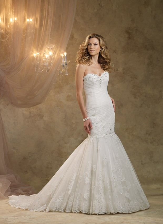 2013 - 2014 Wedding Dress