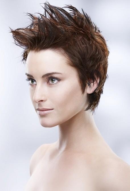 Miraculous Punk Hairstyles For Women Stylish Punk Hair Photos Pretty Designs Short Hairstyles For Black Women Fulllsitofus