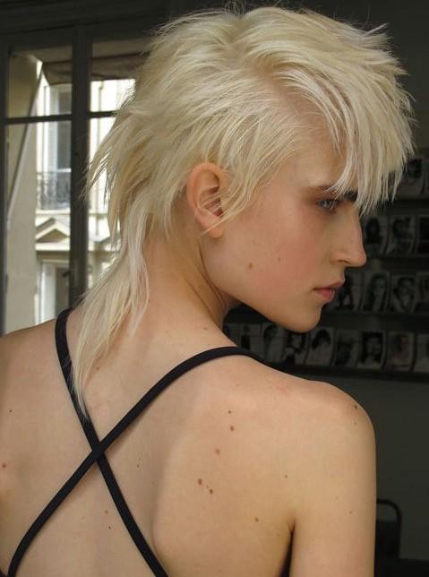 Pleasant Punk Hairstyles For Women Stylish Punk Hair Photos Pretty Designs Hairstyles For Men Maxibearus