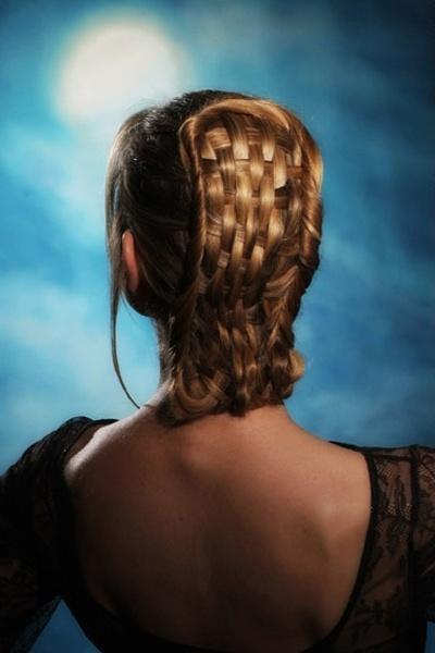 Check Braid Hairstyle