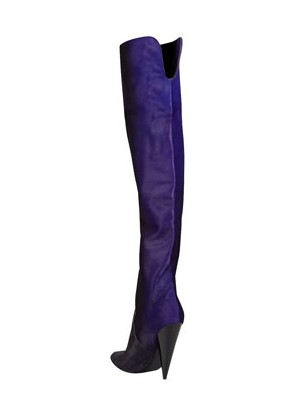 Back View of the Tom Ford Ombre Calf Hair Over-the-Knee Boot