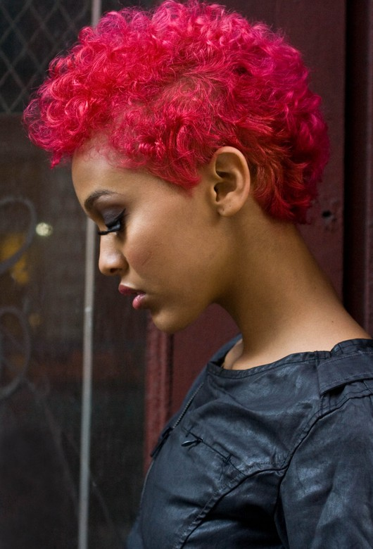 Remarkable 15 Cool Short Natural Hairstyles For Women Pretty Designs Short Hairstyles For Black Women Fulllsitofus