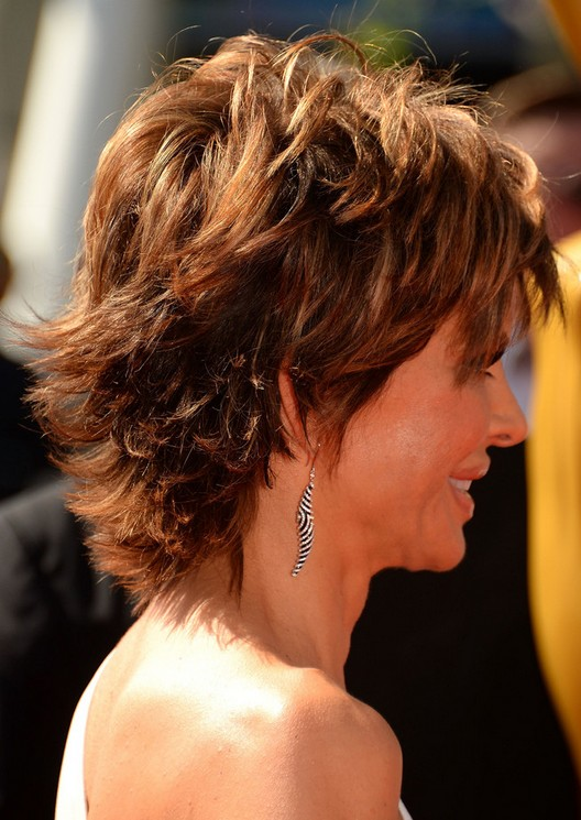 Layered Hairstyle for Thick Hair: Side View of Lisa Rinna's Hairstyle