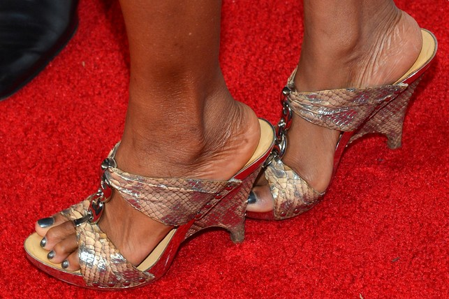 Vanessa Williams' Wedges