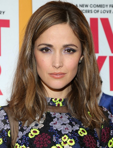 2014 Rose Byrne Long Hairstyles: Brown Hair