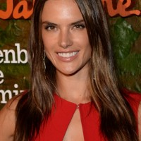 Alessandra Ambrosio Long Hair style: 2014 Straight Hair with Center Part