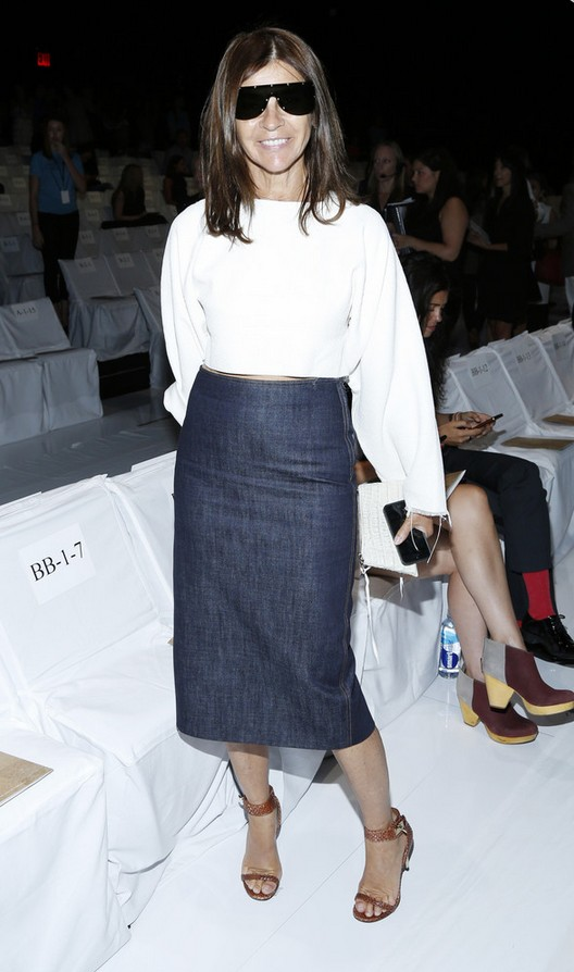 Carine Roitfeld Denim Pencil Skirt with a White Crop Top
