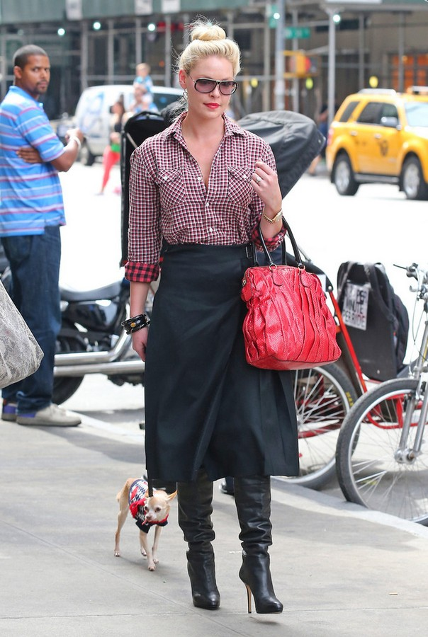 Katherine Heigl Checkered Button Down Shirt with A-line Skirt