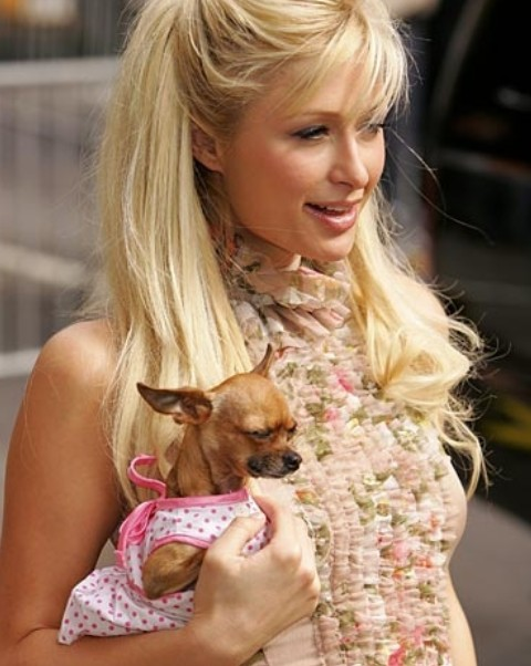 Paris Hilton Hairstyles: Meltinh Half-up Half-down