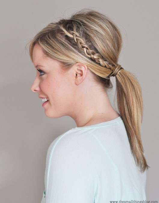 20 Braided Hairstyles Tutorials: Double Braided Ponytail Hair Style