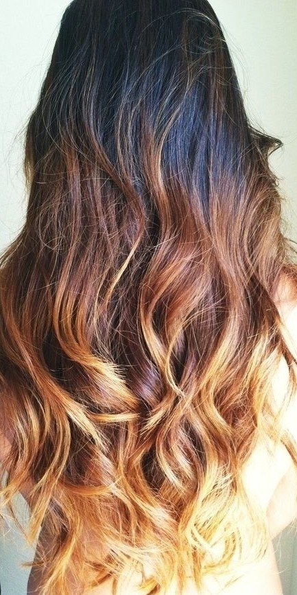 Dark to brown blonde ombre hair ideas for 2015 tumblr