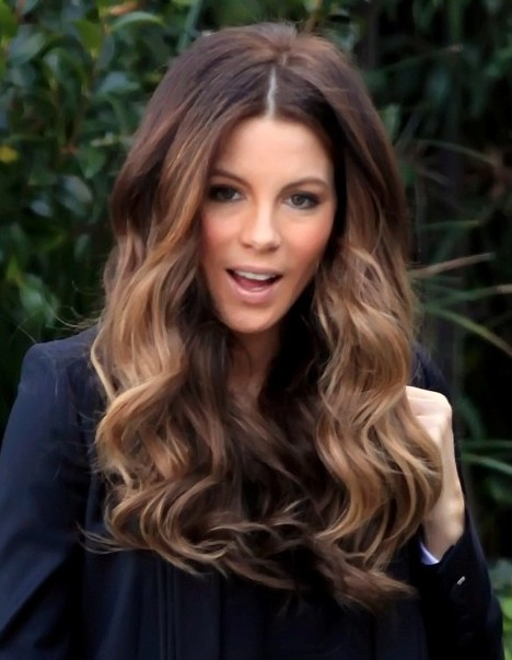 Light Brown Hair Ombre Hottest Ombre Hair Col...