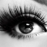3 Steps to Wear False Lashes Perfectly