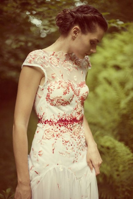 Beautifull lace dress with red embroidery and cap shoulders