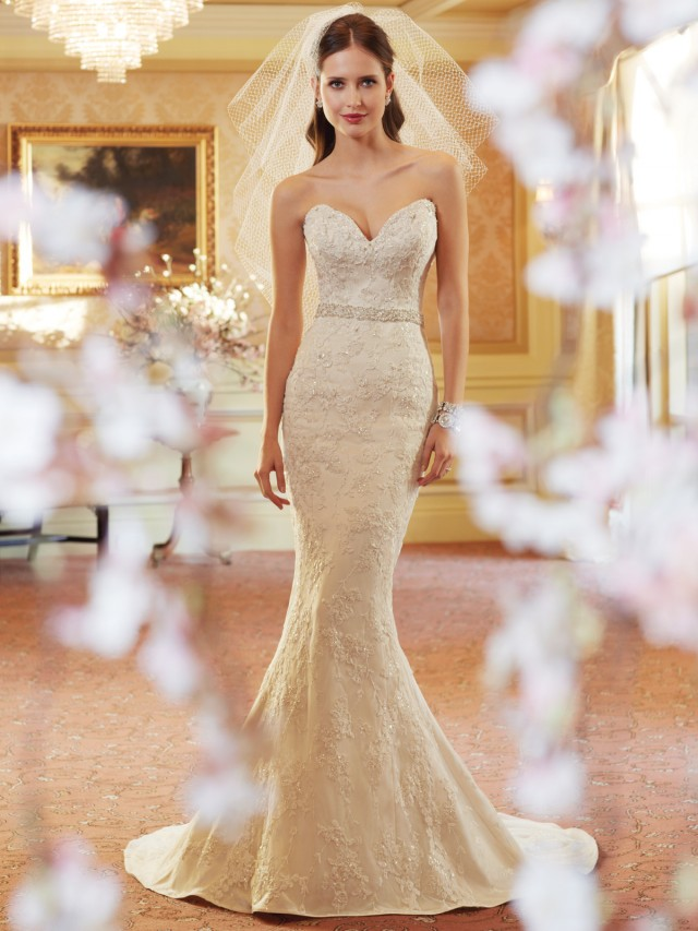 A Collection of 18 Breathtaking Bridal Gowns By Sophia Tolli | Spring Collection