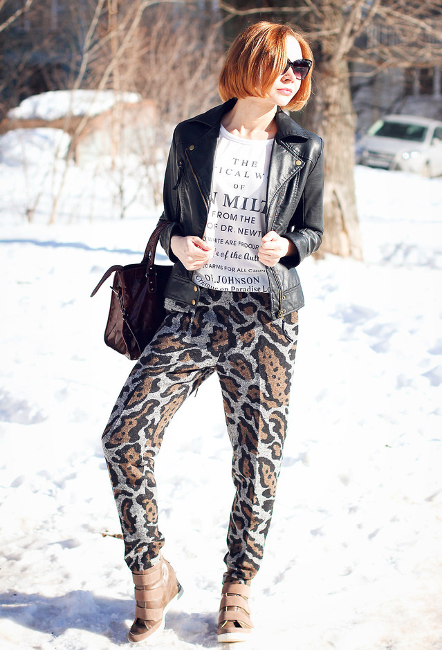 Chic Outfit Idea with Leopard Print
