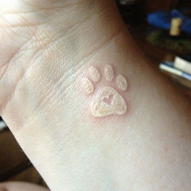 Cute White Dog Paw Tattoo