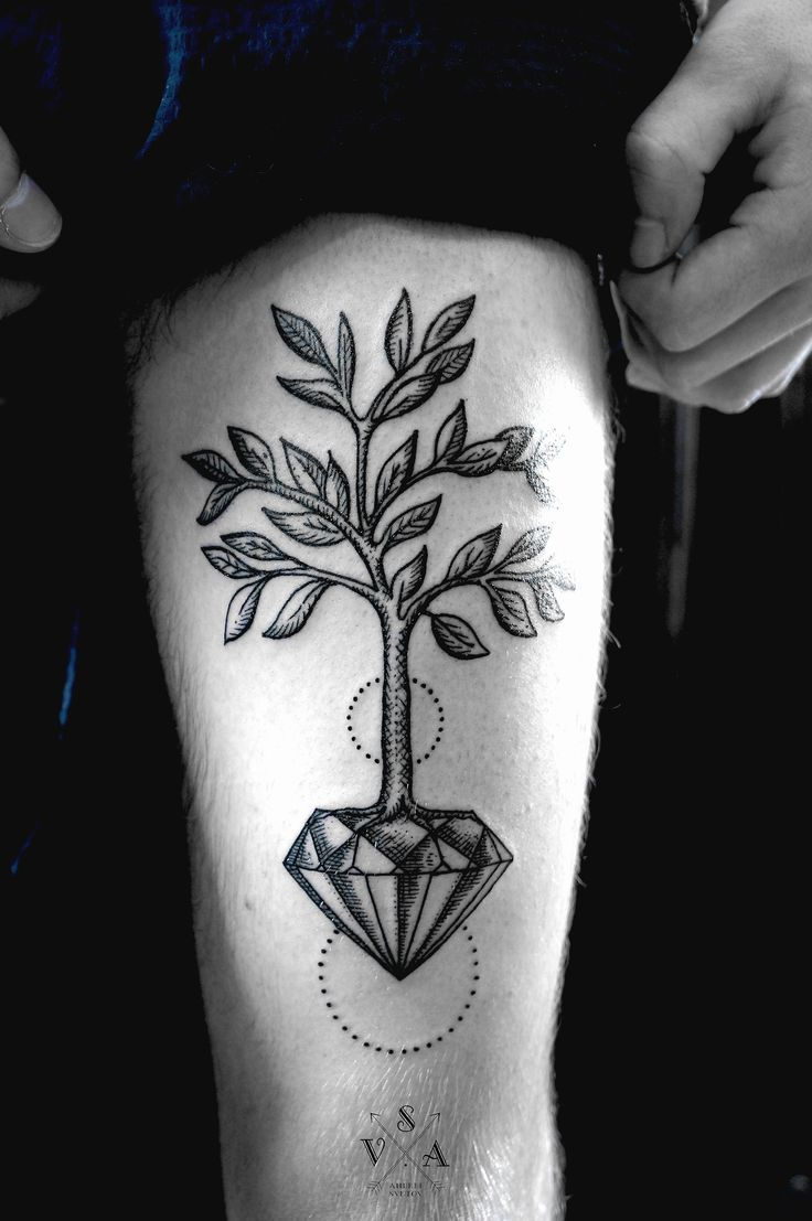 Faddish Plant Tattoo