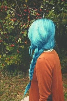 Stunning Braided Blue Hairstyle