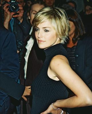 12 Impressive Sharon Stone Short Hairstyles - Pretty Designs