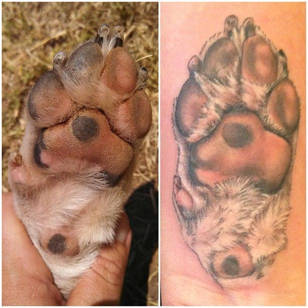 Lovely Paw Tattoo of Your Dog