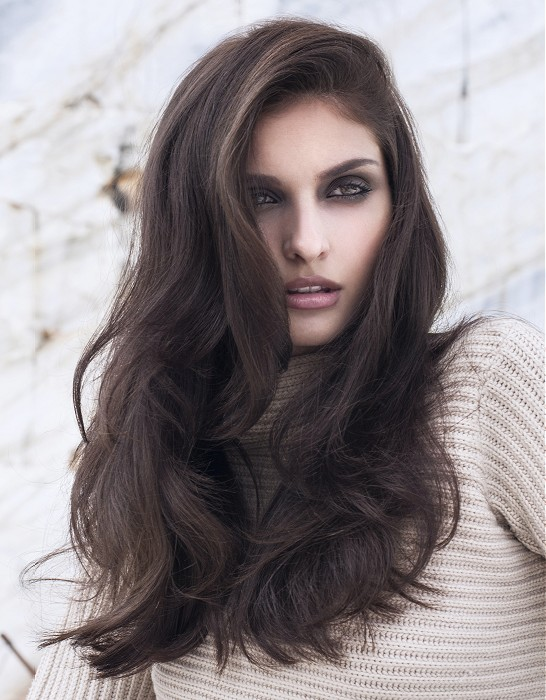 Stylish Long Wavy Hairstyle