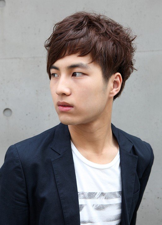 Stupendous 70 Cool Korean Amp Japanese Hairstyles For Asian Guys 2017 Pretty Hairstyles For Women Draintrainus