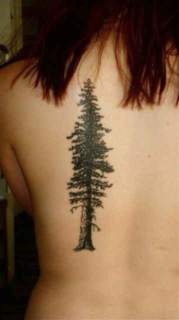 Pine Tree Tattoo on Back