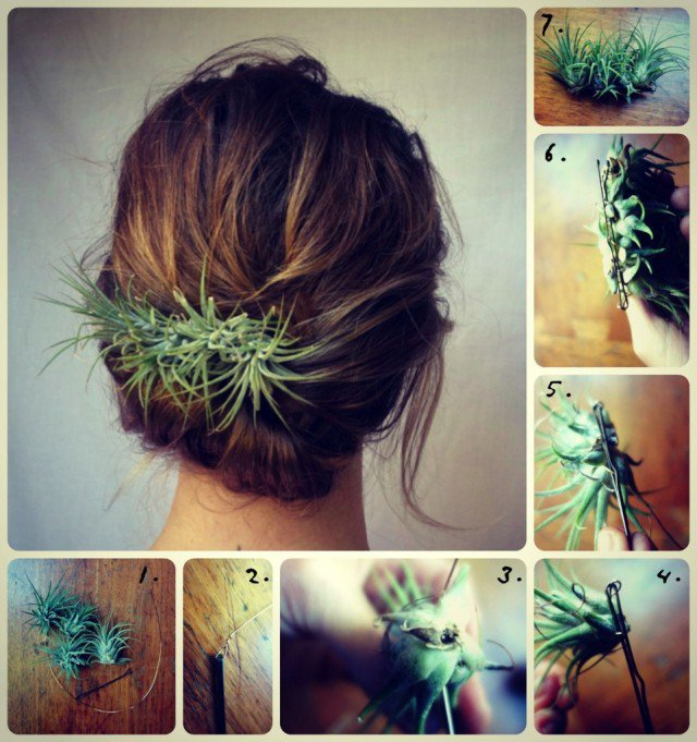 Plant Hairpiece