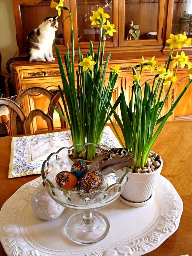 Daffodil Decoration