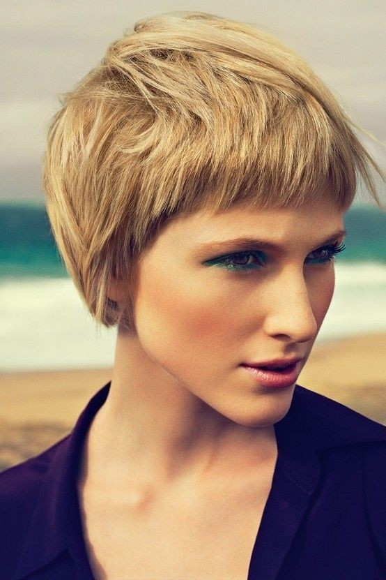 Pleasant 22 Cool Short Hairstyles For Thick Hair 2015 Pretty Designs Hairstyles For Women Draintrainus