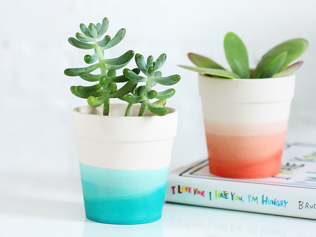 Cute Plants and Neutral Planters