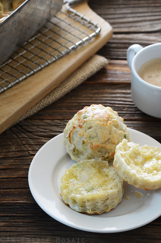 Cottage Cheese Scones 20 Recipes To Delicious