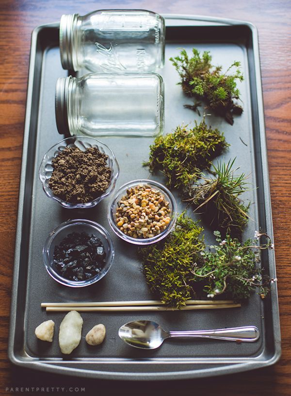 Your Own Beautiful Terrarium