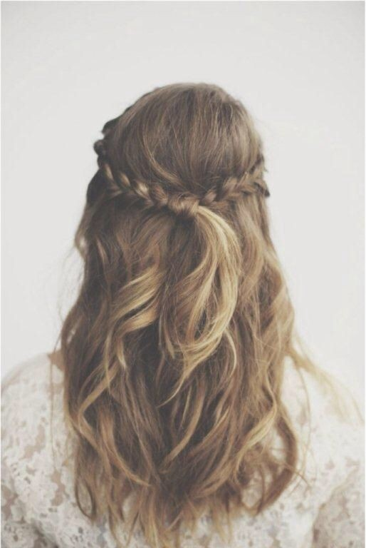 Miraculous Half Up Down Braid Hairstyle Braids Hairstyle Inspiration Daily Dogsangcom