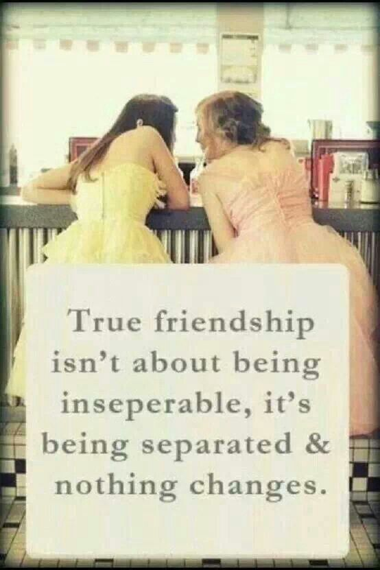 Friendship Quotes 7