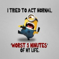 Funny Quotes 32