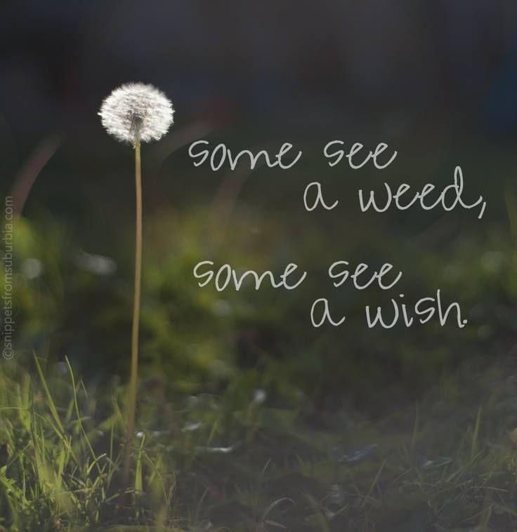 Inspiring Quotes 10