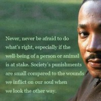 Martin Luther King Quotes 12