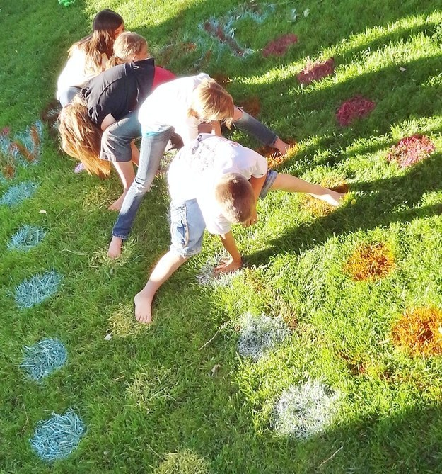 Outdoor Twister Game