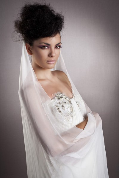 Bridal Hairstyle With Veils