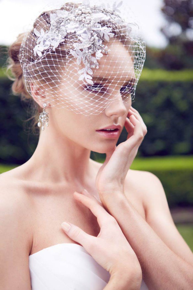 Wedding Updo Hairstyle With Birdnet