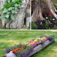 Log Planters