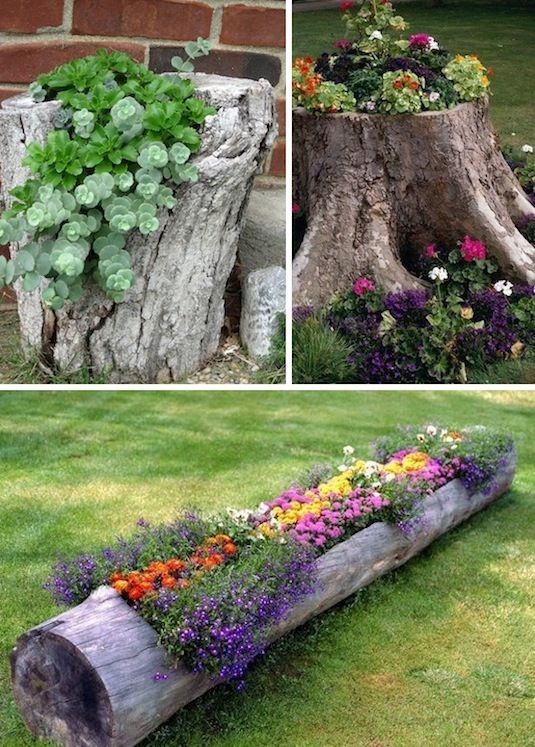 How to Beautify Your Garden - Pretty Designs