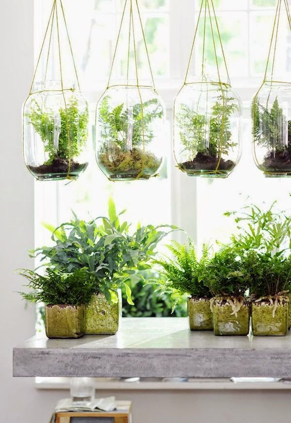 20 hanging planter ideas for home19
