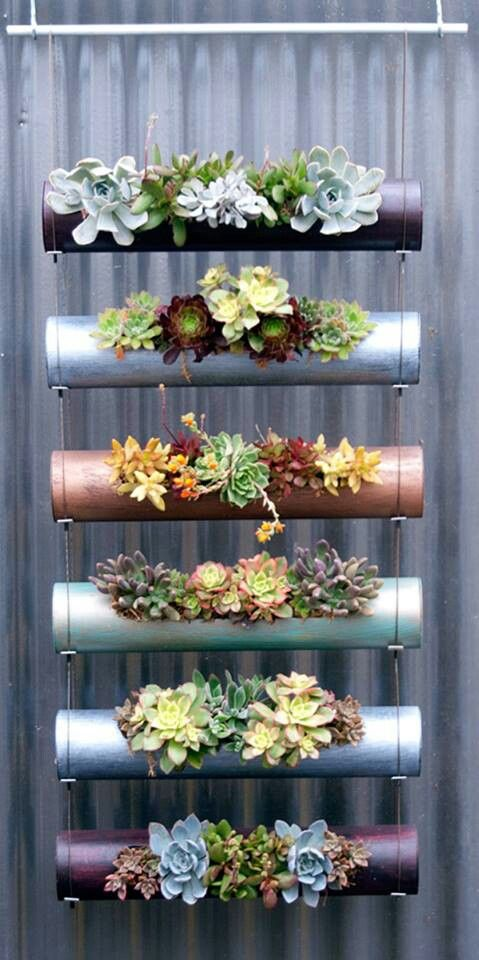 20 Hanging Planter Ideas for Home