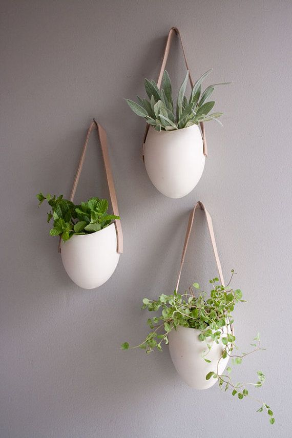 20 hanging planter ideas for home4