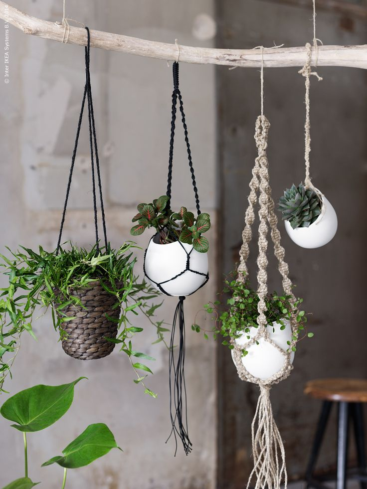 20 Hanging Planter Ideas for Home - Pretty Designs