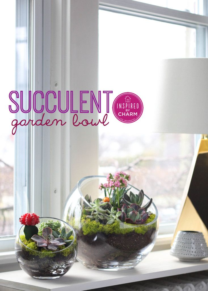 20 Ideas To Decorate Desks With Succulent Pretty Designs