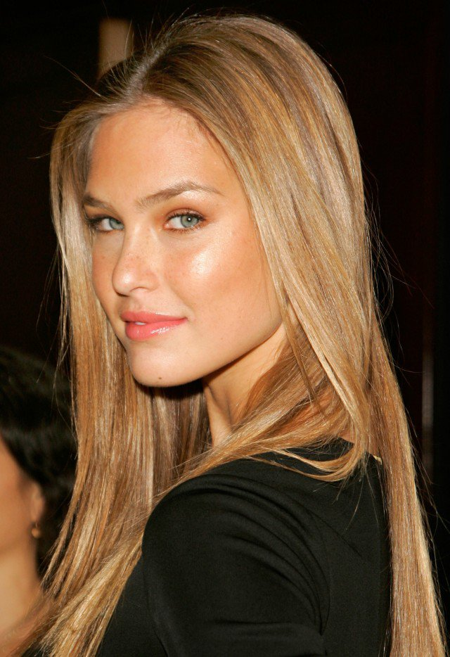 Sleek Straight Honey Blond Hair